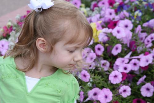 gssmellingflowers