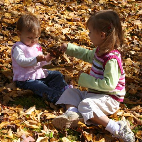 leavesgirls